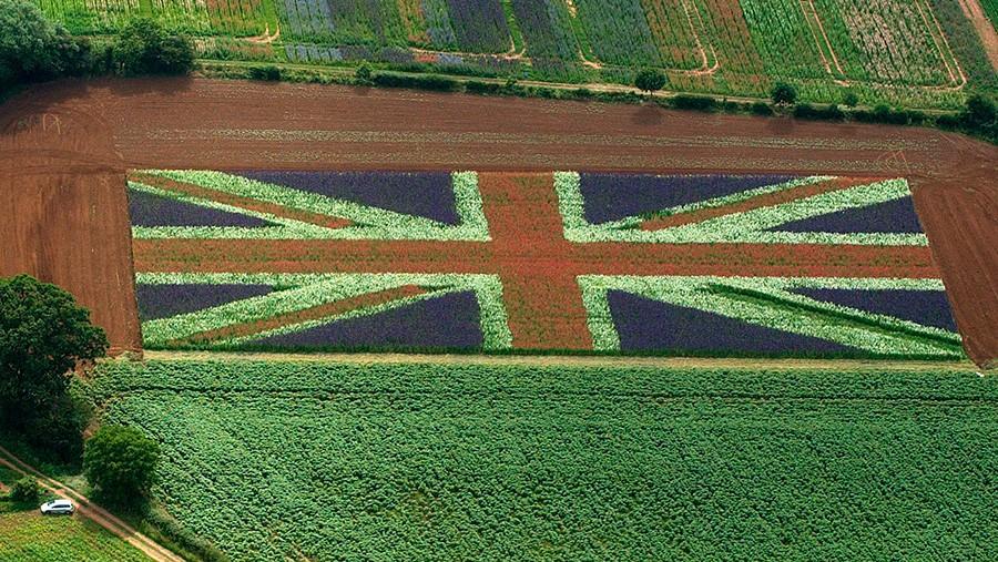 British-agriculture