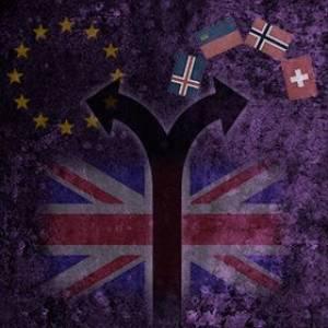 The Viable Alternatives to EU Membership