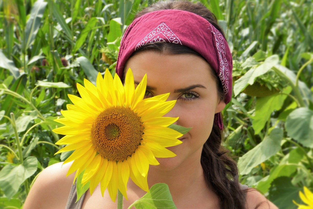 sunflower-2699771_1920